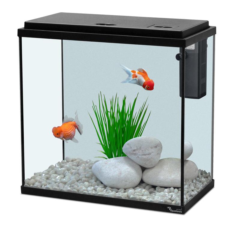 Aquarium kit 35 noir 18l botanic for Aquarium botanic