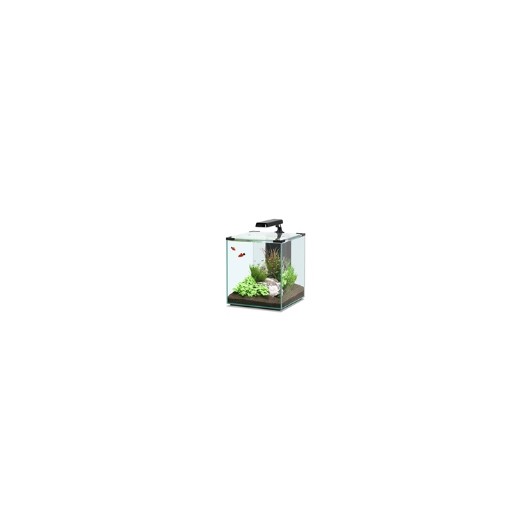 Aquarium nano cubic 40l noir aquariums autres marques for Aquarium rouge
