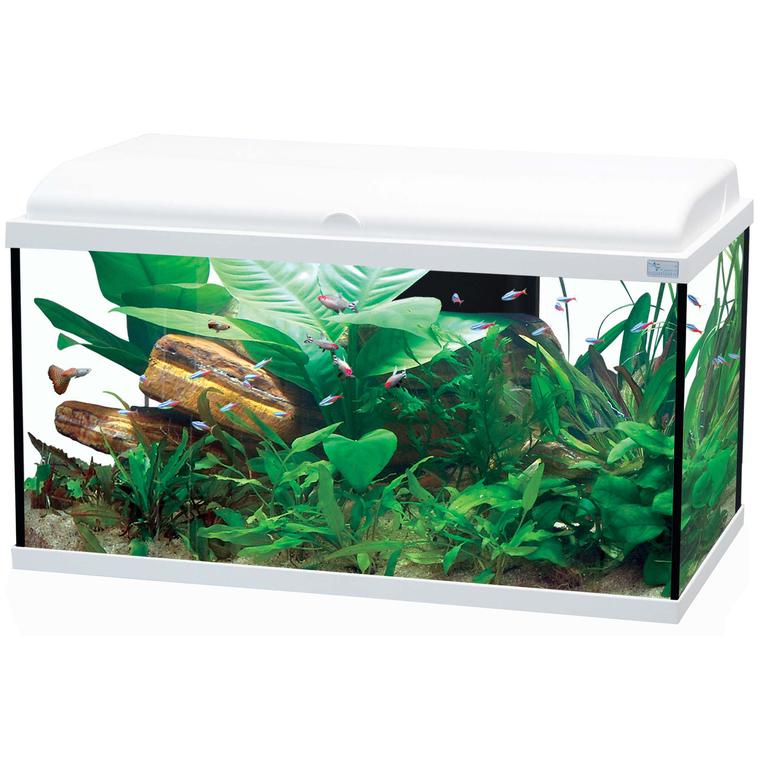 Aquarium aquadream 80 blanc 108l aquariums autres for Aquarium botanic