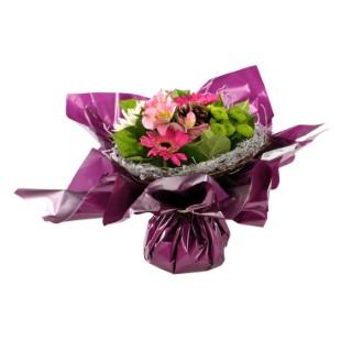 Bouquet bulle rosita 105839