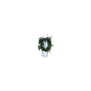 jasmin arceau cache pot plantes fleuries maison botanic. Black Bedroom Furniture Sets. Home Design Ideas