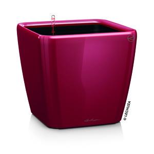 Pot à réserve d'eau Quadro Rouge scarlet L.35x35 x H.33 128971