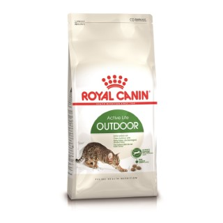 Croquette 10kg chat actif Royal Canin 138995