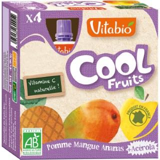 Cool Fruits Bio Pomme-Mangue-Ananas 4 X 90 G VITABIO 159812