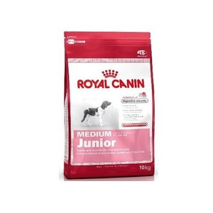 Croquette 10kg Medium junior Royal Canin 160106