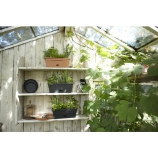 Mini Jardinière 30cm Green Basics Elho coloris terre cuite 165229