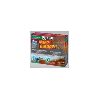 Feuilles de badamier nanocatappa rouge x 10 167595
