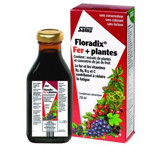 Floradix fer + plantes formule liquide 250 ml 170811