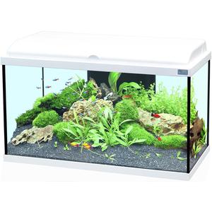 Aquarium Aquadream 60 blanc 54L 187230