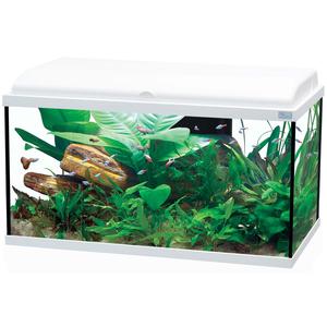 Aquarium Aquadream 80 blanc 90L 187231