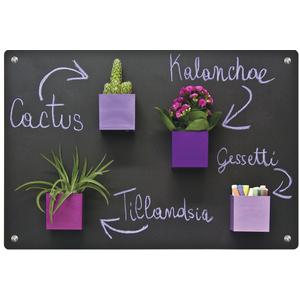 plaque metallique anthracite 56x38 cm rootcatalog botanic. Black Bedroom Furniture Sets. Home Design Ideas