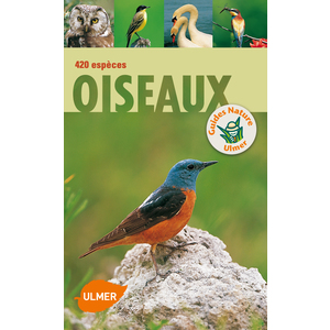 Oiseaux 384 pages Éditions Eugène ULMER 187495