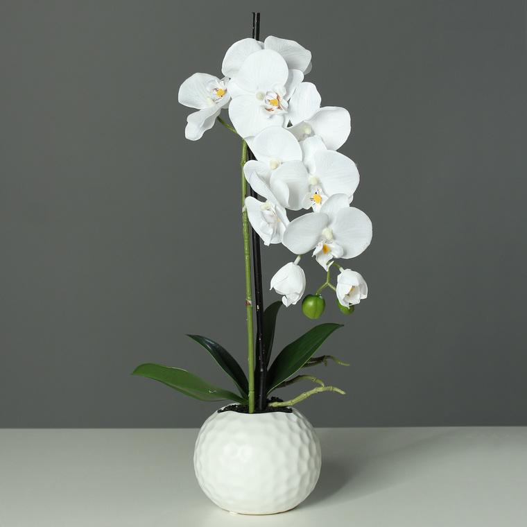 Orchidée phalaeno artificielle pot céramique H46 cm 100773