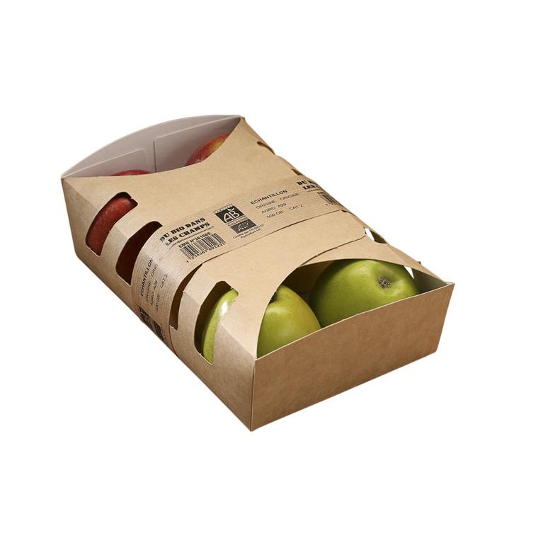 Pomme bicolore bio de France - Barquette 4 fruits 105073