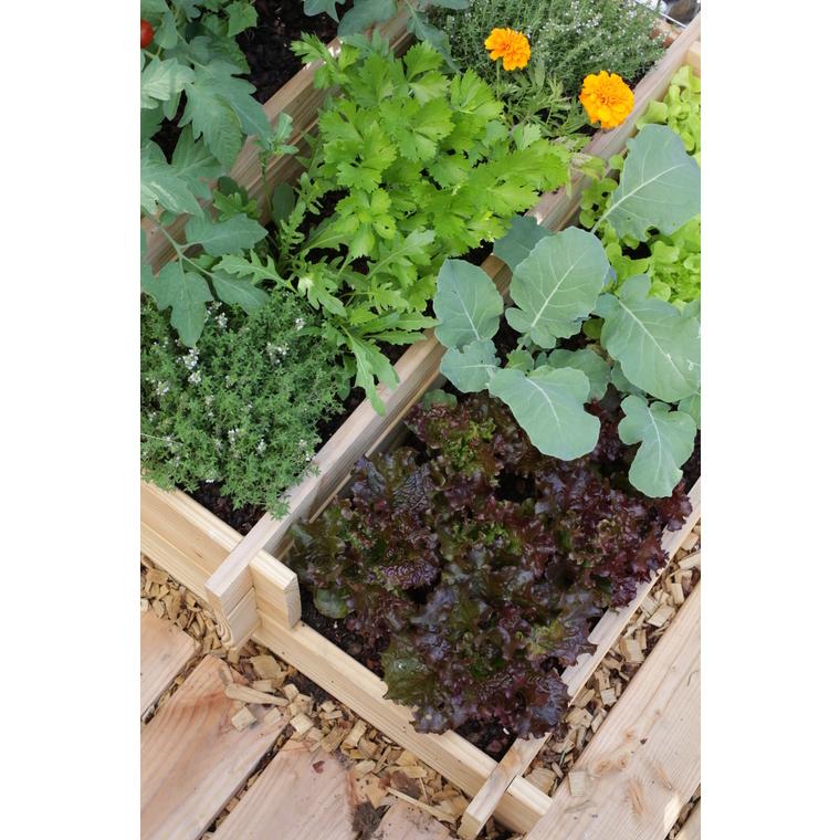 potager 3 tages 90x90 cm avec treillis structures potag res botanic nos produits botanic. Black Bedroom Furniture Sets. Home Design Ideas