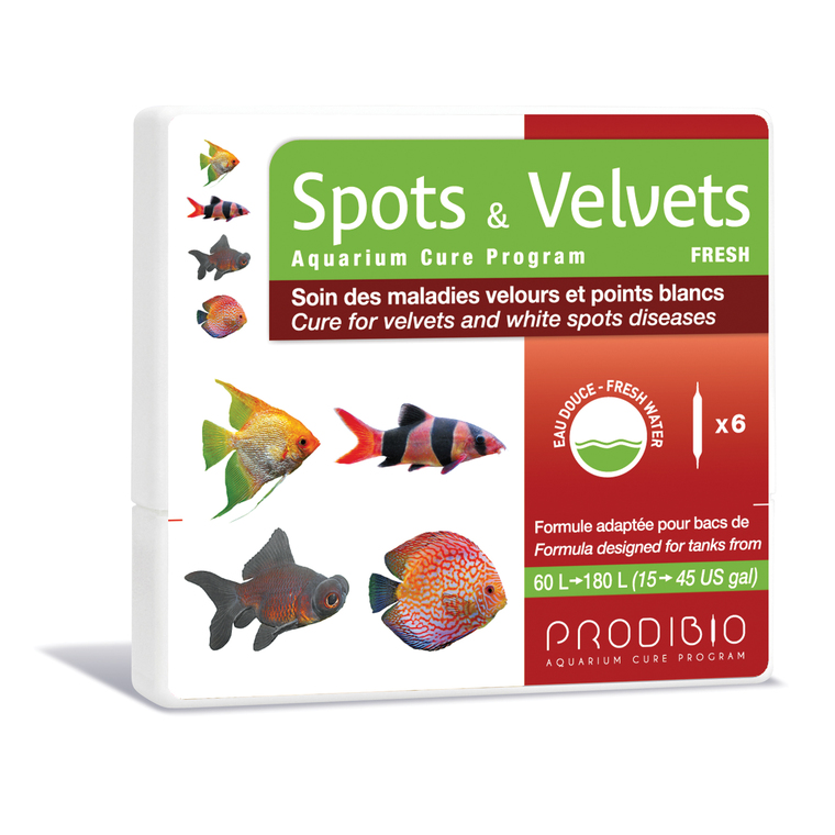 Traitement spots et velvets eau douce multicolore en ampoules x 6 108837