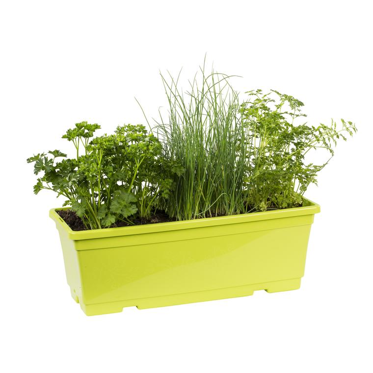 Jardinières De Plantes Aromatiques. La jardinière de 40 cm.