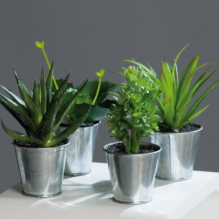 Agave succulente en pot Zinc 117445