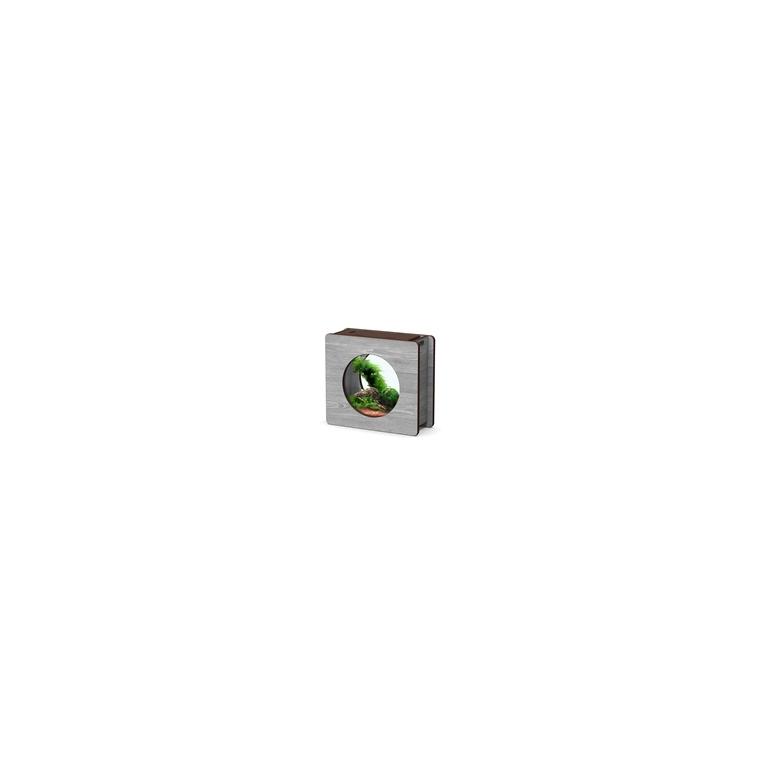 Aquarium Nano Fashion Vision 1 Dennerlé bois veiné 120649