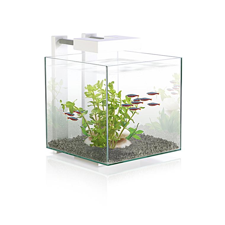 Aquarium blanc nexus 15 avec LED 14 L