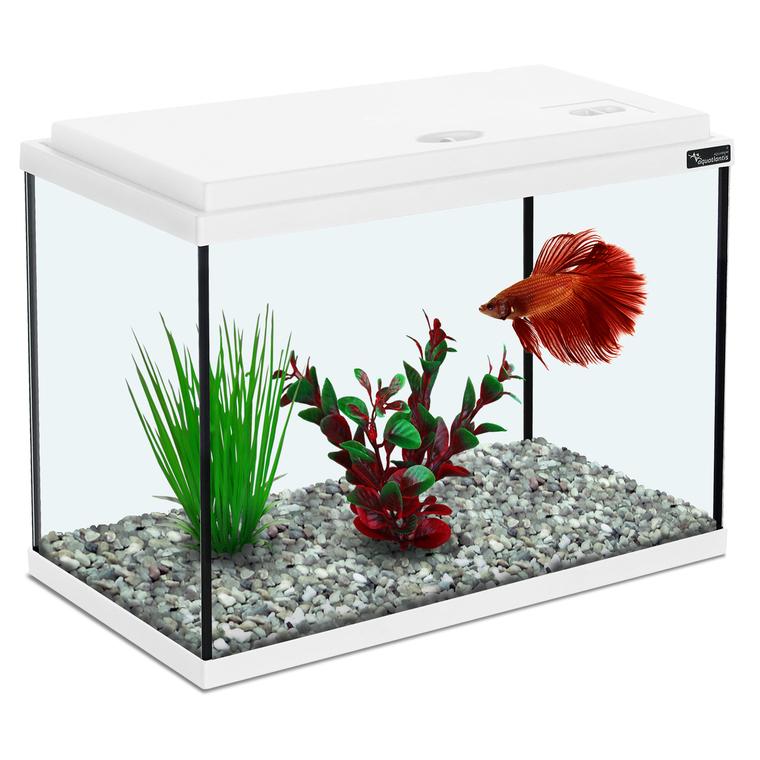 Aquarium 35x18x22 cm blanc 13,8L 130367