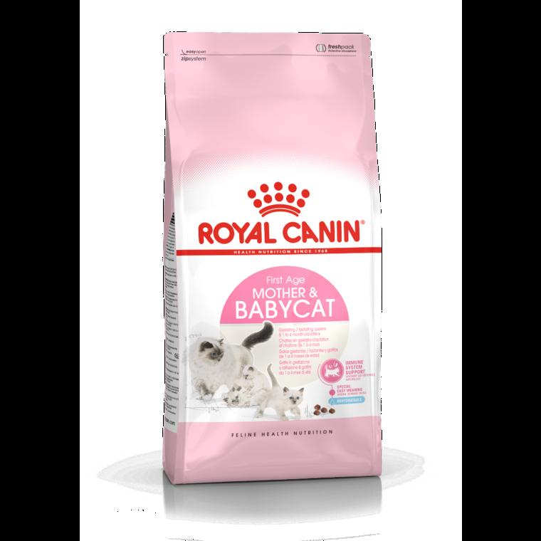 Croquette 4kg chaton 1er âge Royal Canin