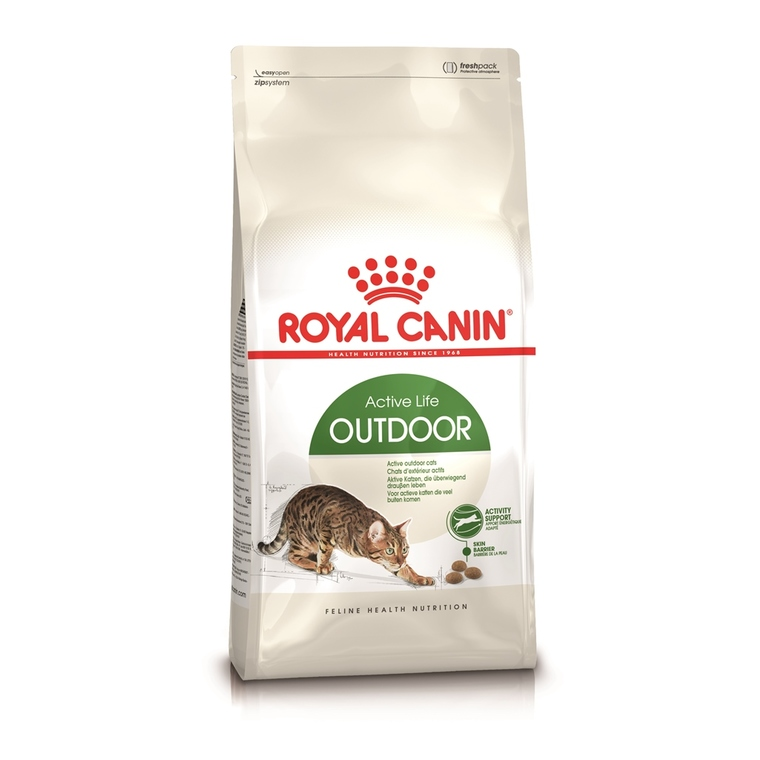 Croquette 2kg chat actif Royal Canin 138988