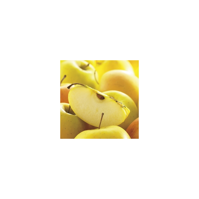 Pommier Tentation® forme gobelet 155303