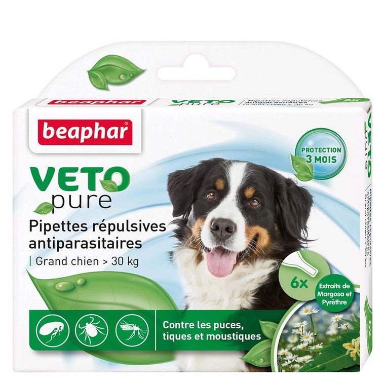 Antiparasitaire chien30kg x6 pipettes Beaphar 155989