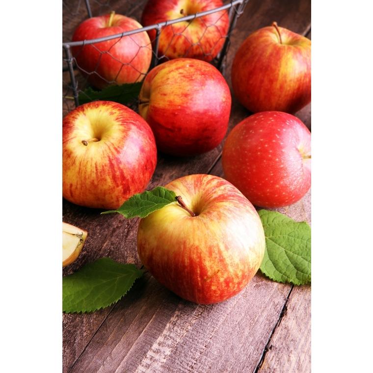 Pomme Reine des Reinettes - Prix au kg 159125