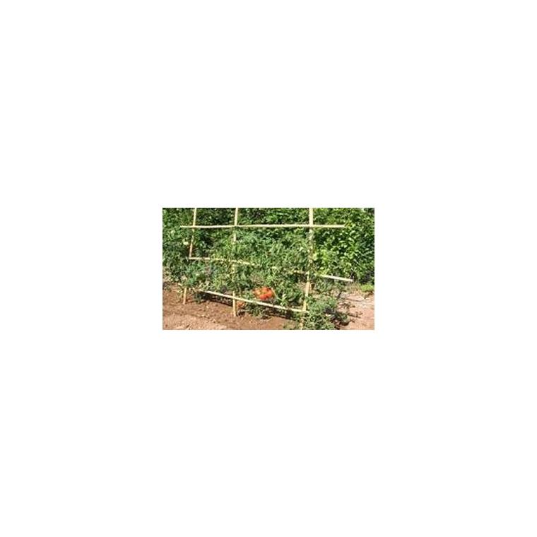 Tuteurs tomates 180 cm