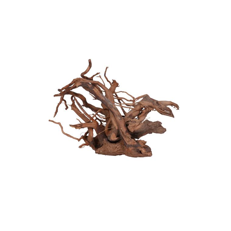 Racine Vigne rare rouge, env. 30 cm 174934