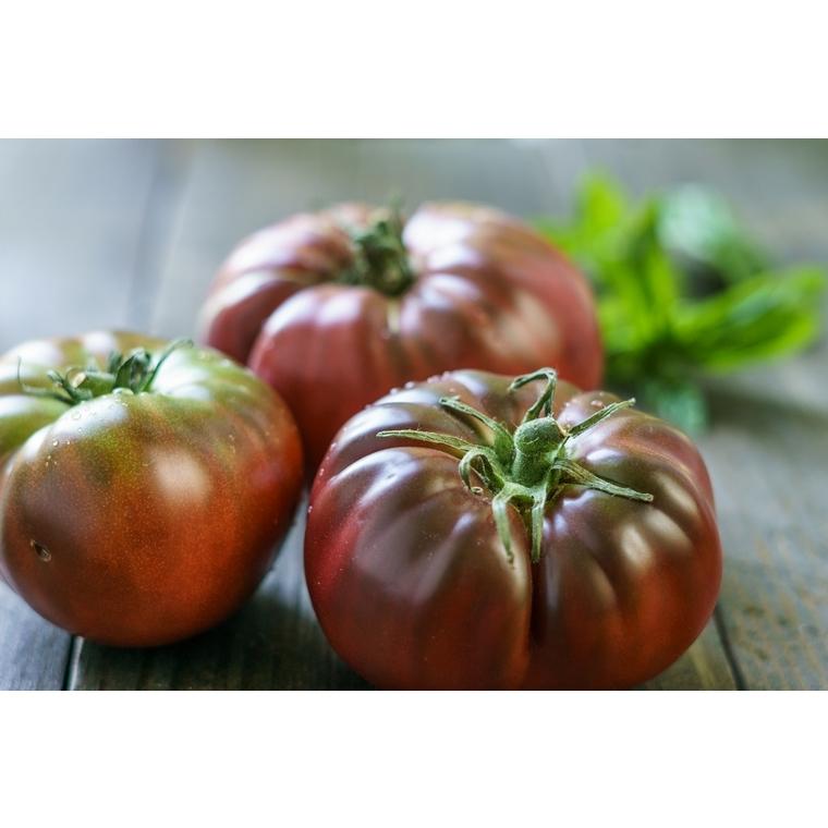 Tomate Noire de Crimée bio de France  - Prix au kg 175076