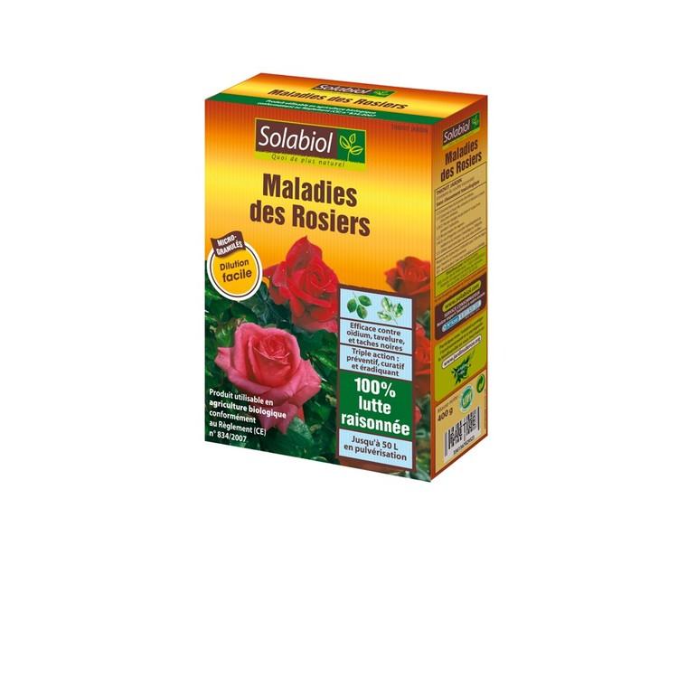 Maladies des rosiers 183287