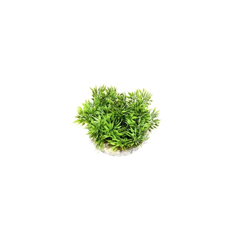 Coupe gazon vert en plastique Ø 9 cm 186546