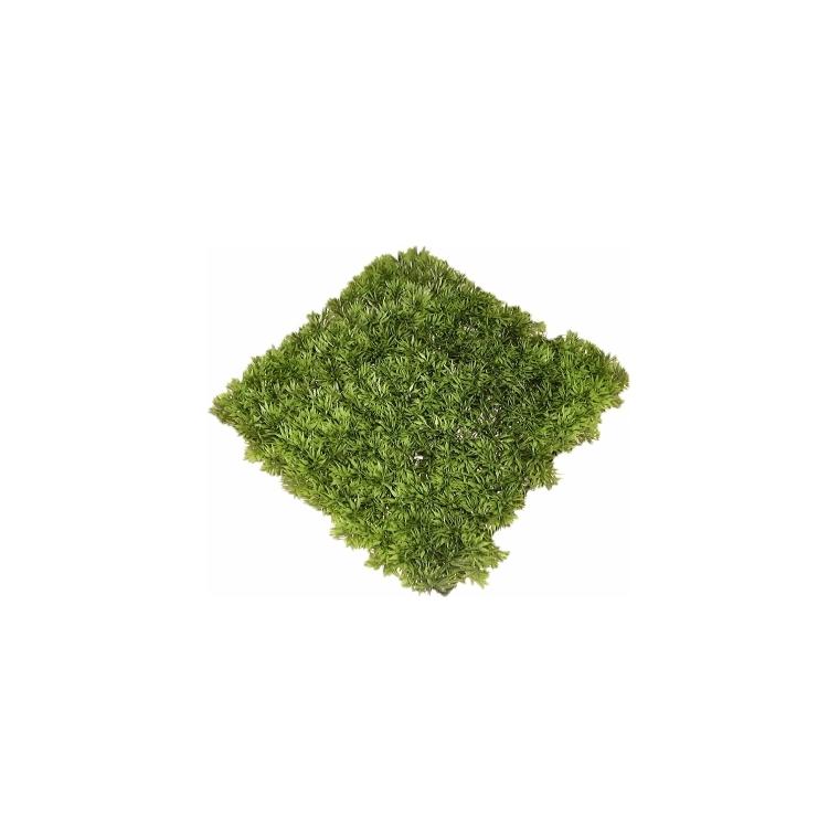 Plaque de gazon vert en plastique 28 x 28 cm 186680