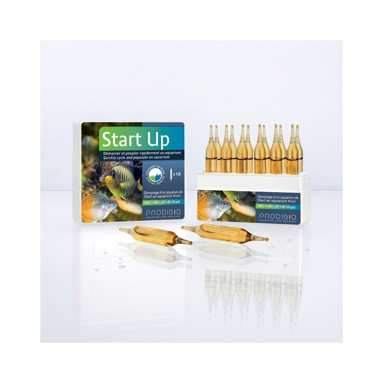 START UP 12 AMPOULES 187918