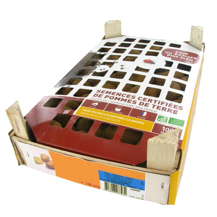 pommes de terre agata bio calibre 0001 100 plants bulbes potagers pommes de terre botanic. Black Bedroom Furniture Sets. Home Design Ideas