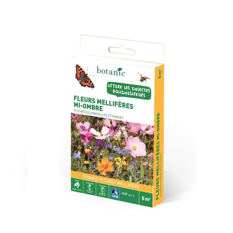 Fleurs mellifères mi-ombre : Graines de fleurs pour la biodiversité ...