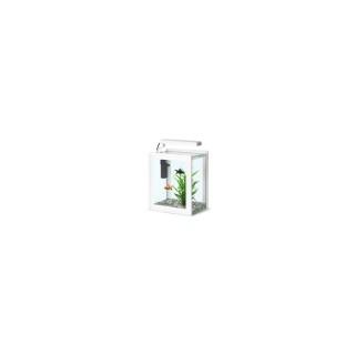 Aquarium DecOrum 35x28x35cm blanc 212207