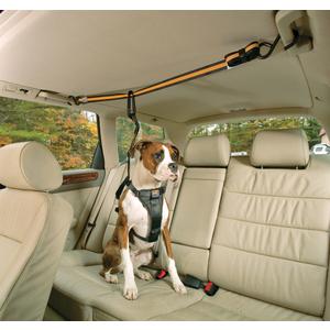 Système d'attaches pour chien  zip line combo 227247