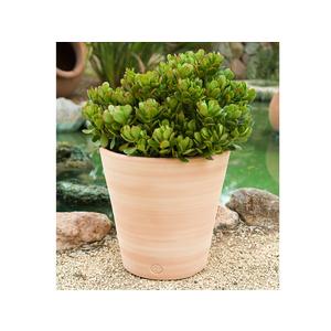 Pot Vaso lisse D27x H27 227973