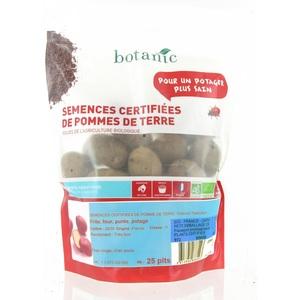 Pommes de terre Delphine bio calibre 0001, 25 plants 228947