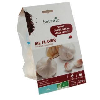 Bulbes d'ail rose flavor AB bio calibre 55+ 250 g 229043