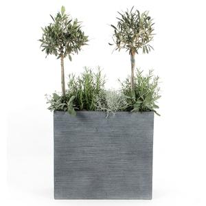 Balconnière Botanic Jardinière Pour Balcon Et Pot à