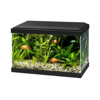 Aquarium 17 L noir 20 LED 40x20x24,8 cm 23029