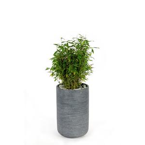 Pot rond STREAM  haut Anthracite Ø.32 x H.50 cm 230293