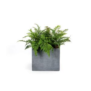 Pot carré bas STREAM S/4 anthracite H.38 cm 230303