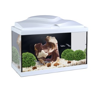 Aquarium Aqua 20 Led Blanc 17l 232186