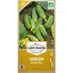 Cornichon Vert Petit de Paris 232598